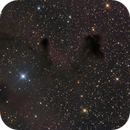 Dark Nebulae in Vela,                                Herbert_W