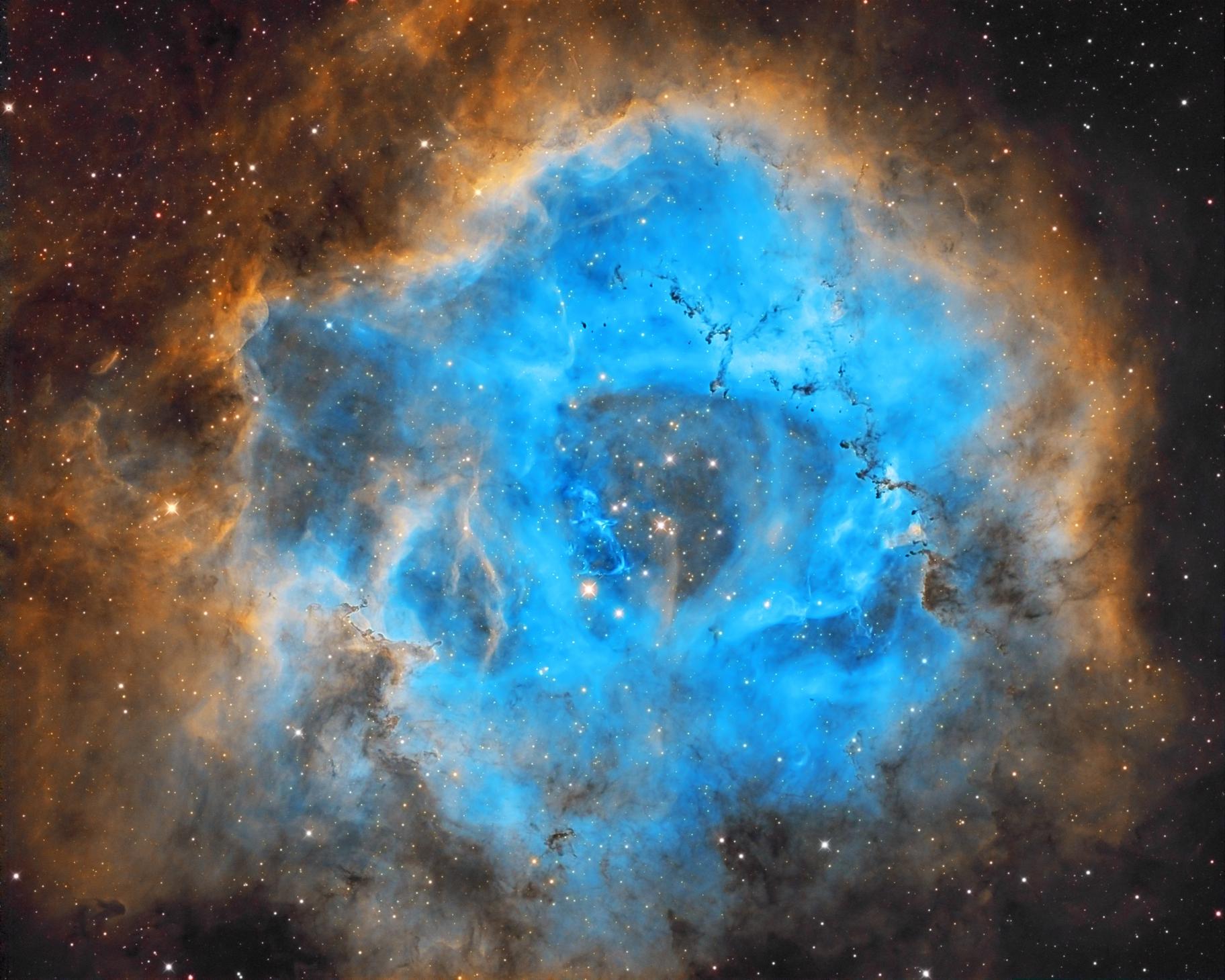 NGC2244 Rosettennebel SHO,                                Andreas Zirke