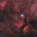 Central Cygnus (Sadr),                                Scott Denning