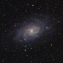 Messier 33 - Galaxie du Triangle,                                Julien Lana