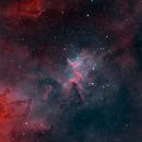 IC1805 HOO,                                Michael Taube