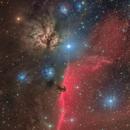 IC434-NGC2023/2024 Horsehead Nebula,                                Masahiro Takahashi