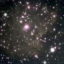 NGC 2175,                                bensinc
