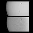 Sun in White Light & H-alpha - December 27, 2020 (w/ AR 2794 & 2795),                                JDJ