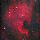 North American nebula, ngc7000,                                Greg Watkins