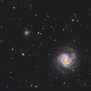 Messier 61, NGC 4292, and NGC 4301,                                Madratter