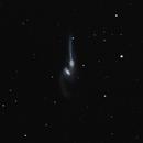 NGC 4676, The Mice,                                Frank Zoltowski