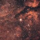 IC1318 - Gamma cygni,                                ZlochTeamAstro