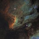 The Pelican Nebula,                                lefty7283