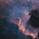 North America Nebula,                                Dan Vranic