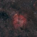 IC 1396 - Widefield @ 135 mm f/2.8,                                Wolfgang Zimmermann