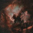 Norte América y el pelícano,                                Astronomono