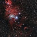 NGC 2264,                                Nikolaos Karamitsos