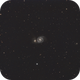 M51 from City,                                Pogo30