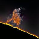 Sun - prominences detail (2),                                Stephan Reinhold