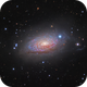 M63~Sunflower Galaxy,                                Fluorine Zhu