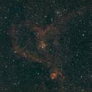 LDN 1369 - The Heart Nebula,                                Jon Stewart