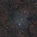IC 1396,                                Gardner D. Gerry