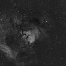 NGC7822,                                NewfieStargazer