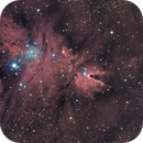 NGC2264,                                Bruno de la Fouchardiere