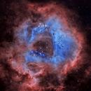 NGC-2238 The Rosette Nebula,                                Earl Hebert