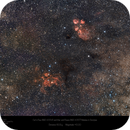 The Cat's Paw (NGC 6334) and War and Peace (NGC 6357) Nebulas in Scorpius,                                Paul Baker