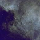 North America Nebula - NGC 7000,                                Ali Efe Sarikaya