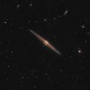 The Needle Galaxy,                                Szymon Gala
