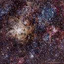 Tarantula Nebula 171217,                                Flint