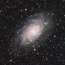 M 33, Triangulum Galaxy,                                Michael Timm