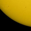 Sonnenfleckengruppe AR 2564 / AR 2562,                                Wolfgang Zimmermann