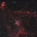 Heart Nebula,                                Boštjan Zagradišnik