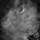 NGC7000,                                Felix Masso Milleiro