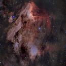 Pelican Nebula,                                Carlos  Rotellar
