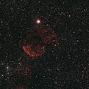 IC 443 - Jellyfish Nebula,                                Michel FLEUREAU