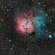 Trifid Nebula,                                Mirko M