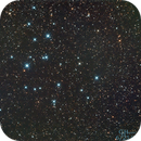 M39,                                Gordon Hansen