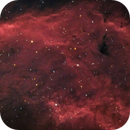 California Nebula (NGC 1499) - HaRGB,                                Marco Rapino