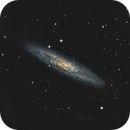 Sculptor Galaxy, Re-process,                                doug0013