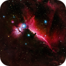 Horsehead Nebula with TMB 115/805 APO and ASI6200MM Pro under City Skies,                                Mike