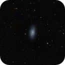 M64 - Black-eye Galaxy,                                Prath Pavaskar