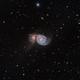 M51,                                Dasidius