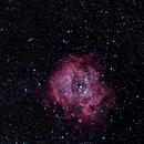 Rosette Nebula,                                Starblazer
