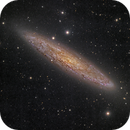 Sculptor Galaxy (NGC 253),                                Miles Zhou