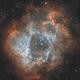 NGC2237,                                Philippe Brismez