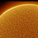 Surface & Prominence,                                Luk