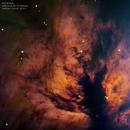 NGC2024,                                Mathieu Guinot