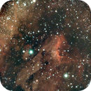 Pelican Nebula,                                John Hosen