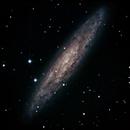 NGC 253,                                Günther Eder