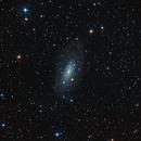galassia Ngc3621,                                Rolando Ligustri